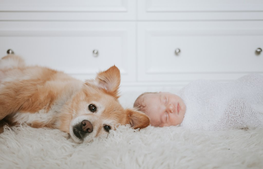 baby and puppy at-home newborn