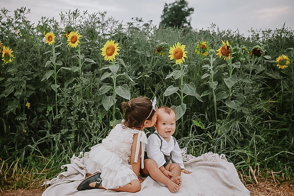 sunflower mini session photographer