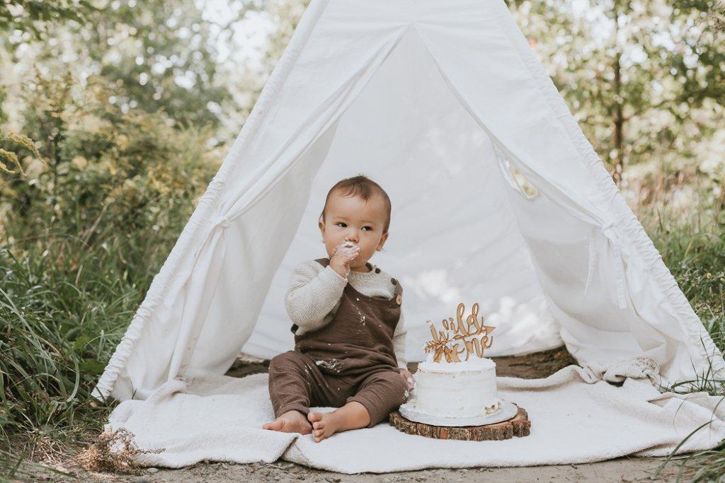 boy wild one cake smash