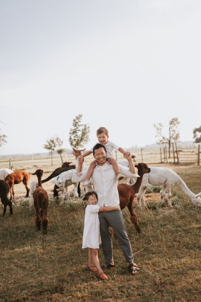 family photos with alpacas