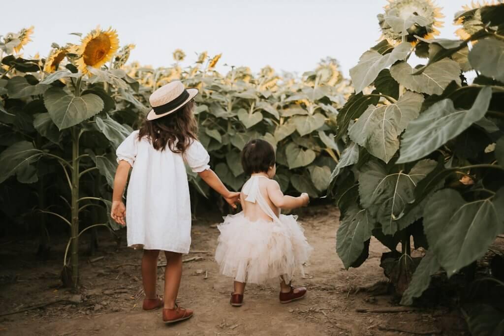 family sunflower mini sessions