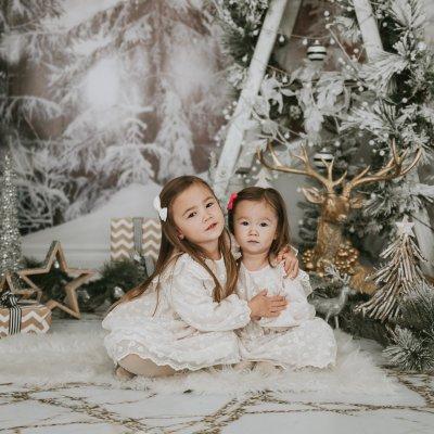 The beautiful Christmas Mini sets over the years – Toronto Photographer