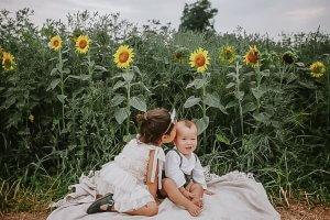 Sunflower Mini Sessions